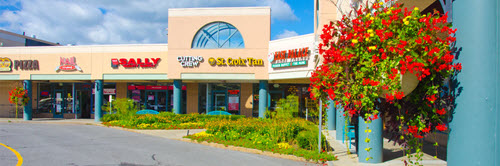 Clifton Park shopping center