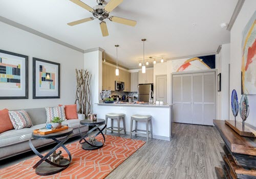 Pflugerville apartment complex living room